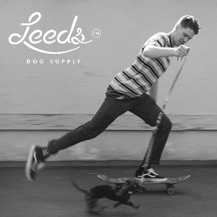 [クリックポスト対応] Leeds Dog Supply リーズドッグサプライ COLLAR 首輪 POOL PARTY Lサイズ