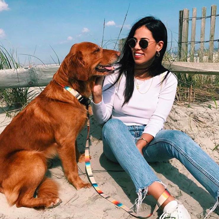 [クリックポスト対応] Leeds Dog Supply リーズドッグサプライ COLLOR 首輪 CALAFIA Mサイズ