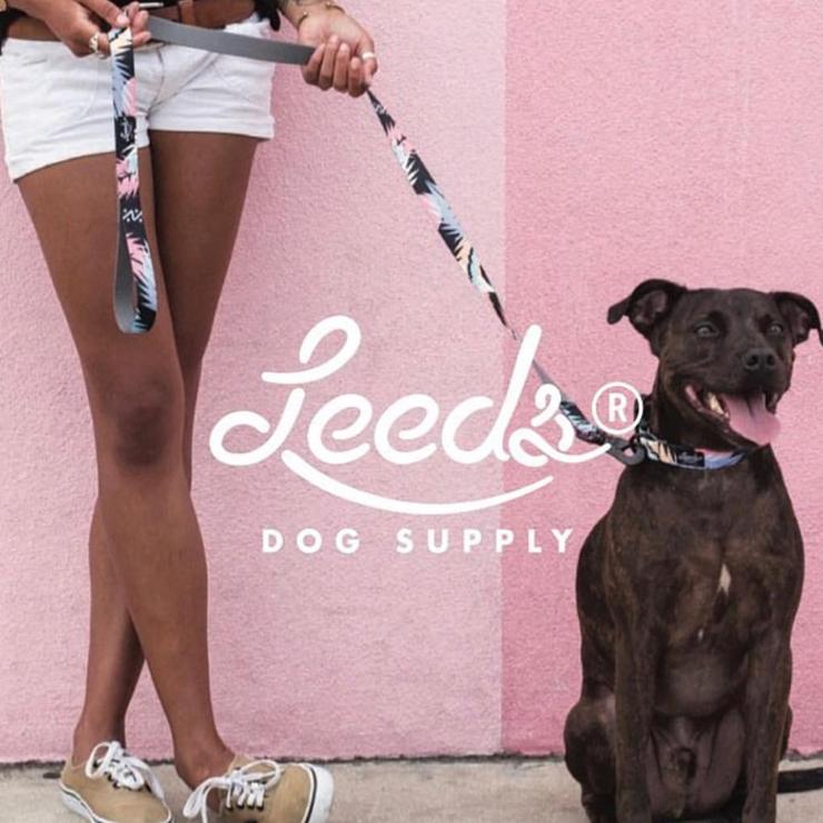 [クリックポスト対応] Leeds Dog Supply リーズドッグサプライ COLLOR 首輪 OASIS Sサイズ