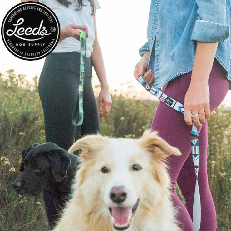 [クリックポスト対応] Leeds Dog Supply リーズドッグサプライ COLLOR 首輪 CATALINA Sサイズ