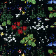 【生地】アルビッドソンズ・テキスタイル/ARVIDSSONS TEXTIL ヒムラヨーダン/Himlajorden  全4色/10cm単位 ■
