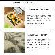 玄関マット 室内用 島塚絵里デザイン Kobe Muoto Collection Kleen-Tex 45×75cm 全7種