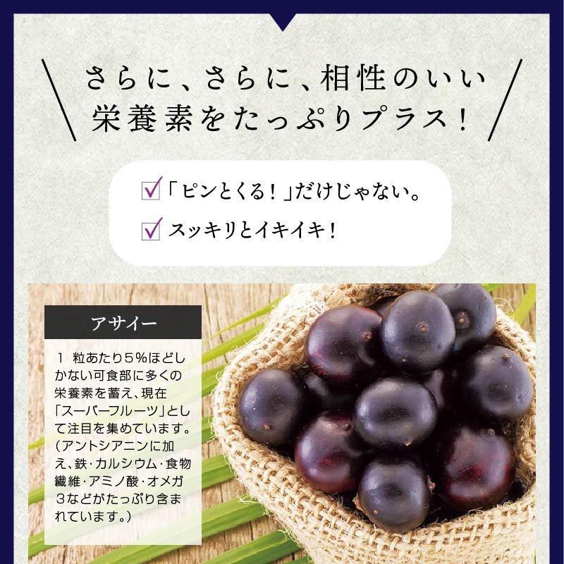 食べるブルーベリー ルテイン ビタミンB12.B1配合。(90粒入/1袋 約1ヵ月分)<br>おやつ感覚で食べる新感覚のサプリメント。<br>パソコンやスマホの使用が多い方。