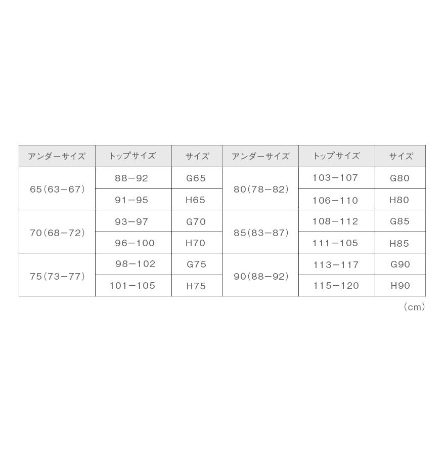 【2021年1月11日まで●50%OFF●】グラマラス3/4カップブラジャー≪bloom≫G・Hカップを美しいシルエットへ導く補正ブラ G65-H85