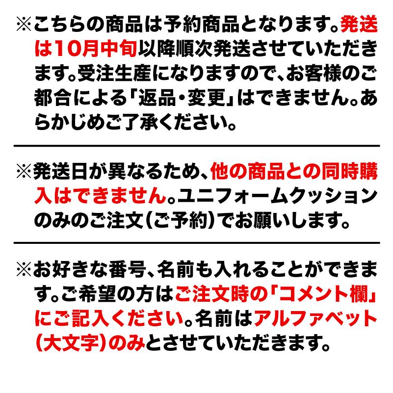 【予約商品】栃木シティ ユニフォームクッション