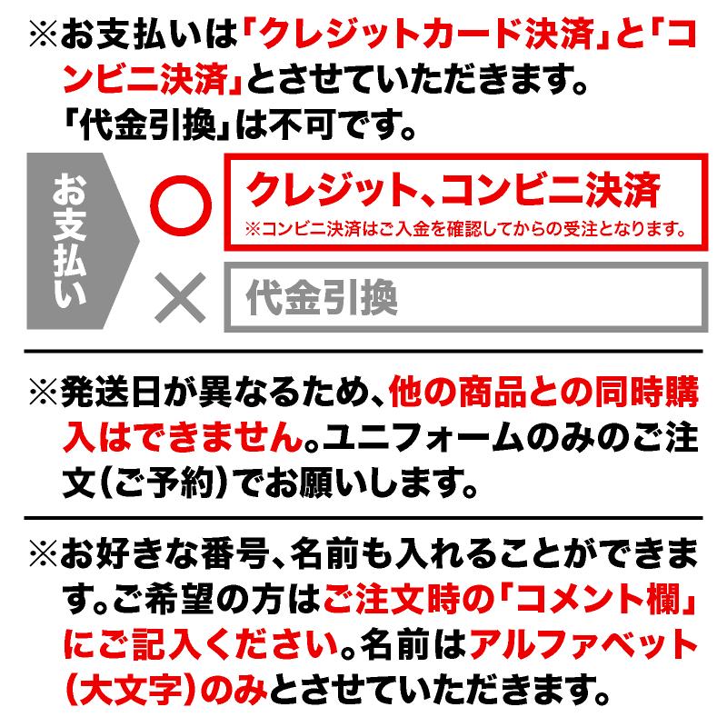 【予約商品】トルエーラ柏 オーセンティックユニフォーム2020 2nd/FP