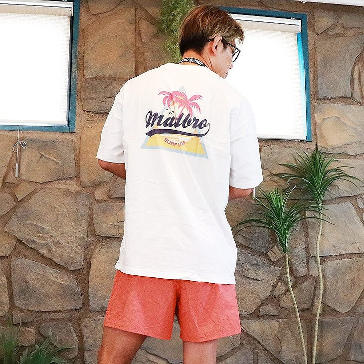 Rainbow Embroidery Shorts