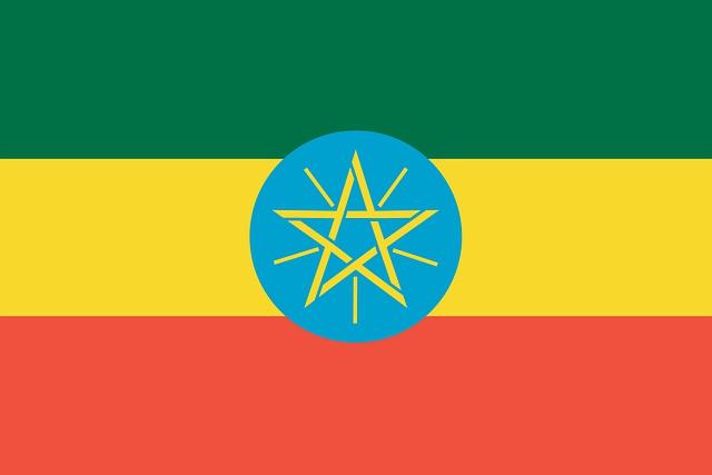 エチオピア・グジ・ベガ G1 Natural