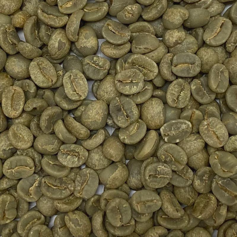 New セラード 手摘み完熟豆 Washed 2020