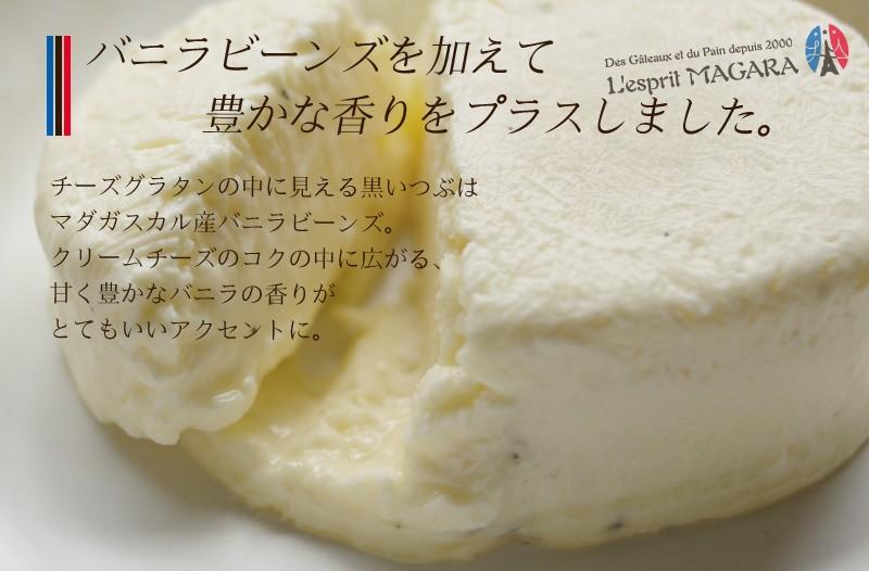 送料別 チーズグラタン5個入 簡易ギフトボックス