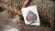 シークリーチャー・デック / Sea Creatures Deck (Colorized) Playing Cards