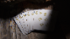【特価】Lies Playing Cards (Nothing is Real)