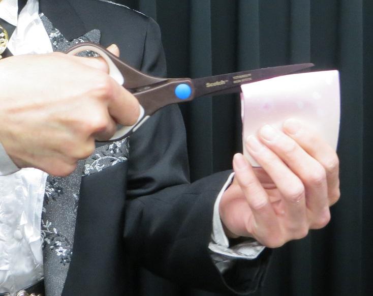 連理の折り紙・ルーティン