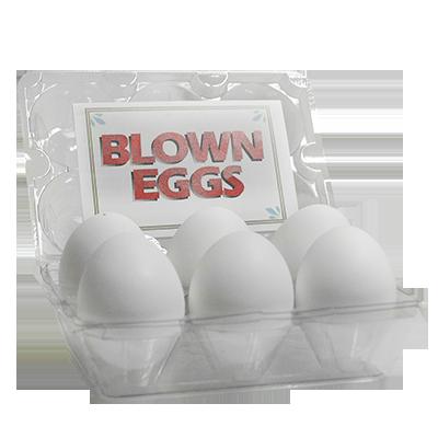 High Quality Blown Eggs(高品質・中空タマゴ)