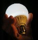 Magic Light Bulb/マジック・大型電球