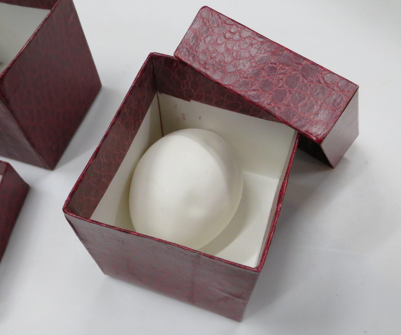Mario Egg + Box/スーパーラテックスエッグ+ボックス