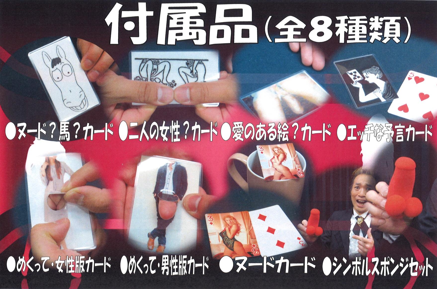 アダルトマジック・マスター(8種類付属品付きDVD)