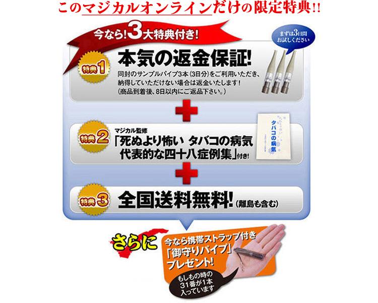 離煙パイプ 31本セット 「吸いながら禁煙」 公式特典付き