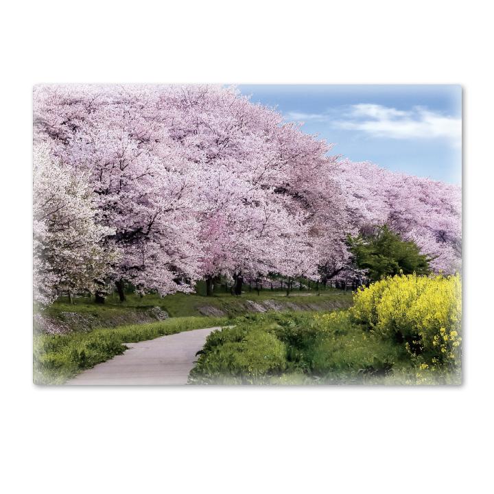 おふろポスター【桜並木の道】マグネットシート製【宅急便限定】