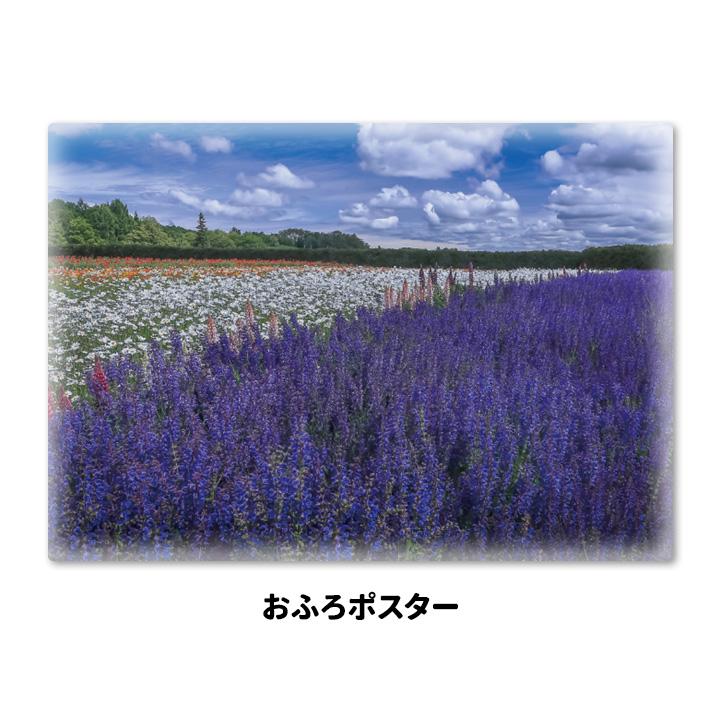 おふろポスター【ラベンダー畑】マグネットシート製【宅急便限定】