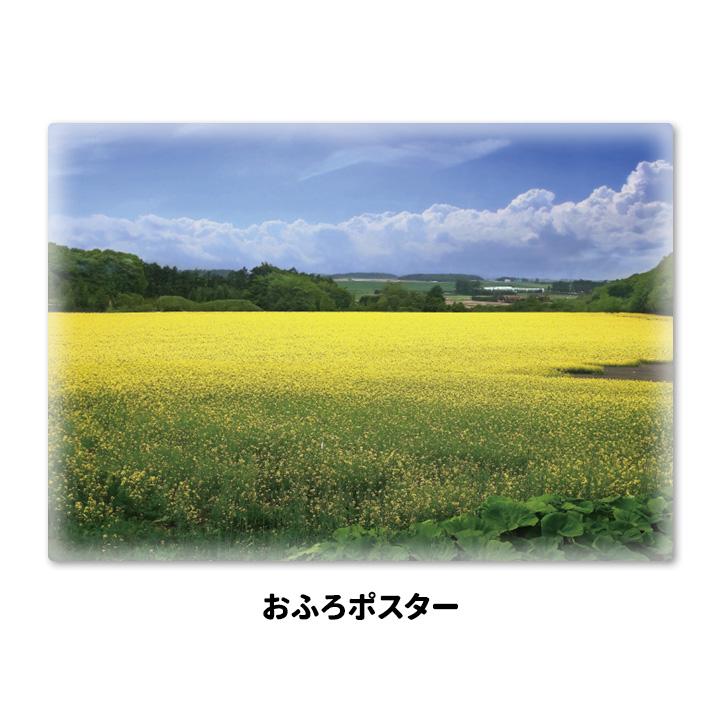 おふろポスター【菜の花畑】マグネットシート製【宅配便限定】