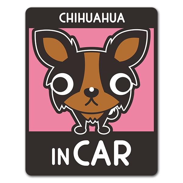 チワワ ロングコート 2色 選べる毛色全3種【CHIHUAHUA IN CAR】車マグネットステッカー【ゆうパケット対応商品】