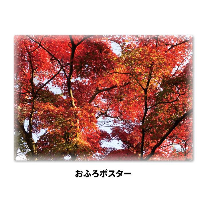 おふろポスター【紅葉】マグネットシート製【宅配便限定】