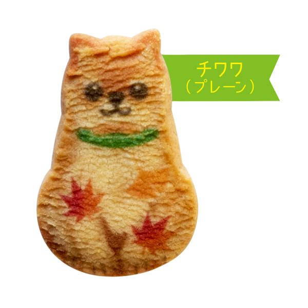 わんわん犬さんくっきー10枚入【秋】