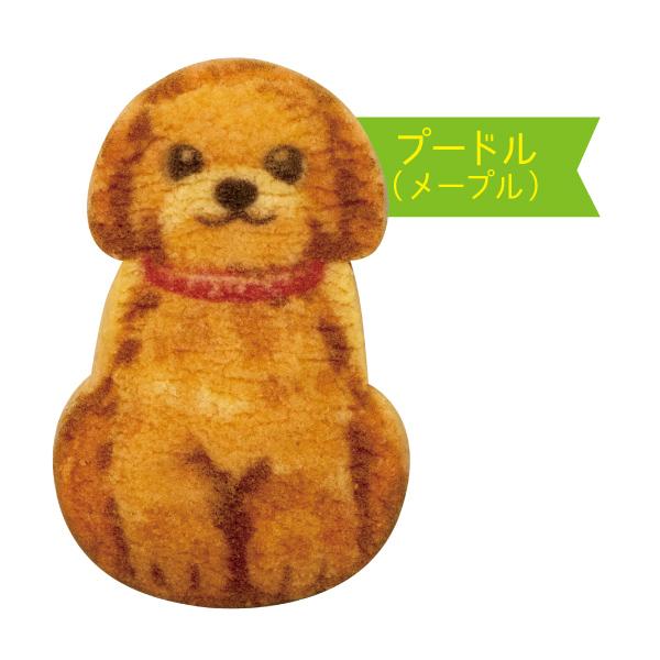 わんわん犬さんくっきー3枚入【プードル】