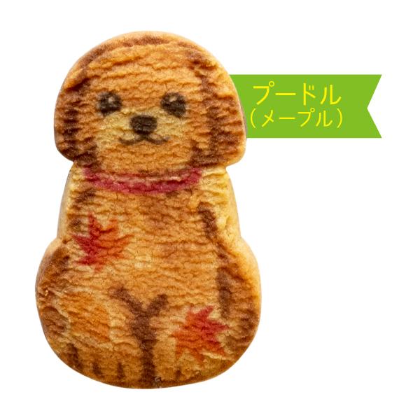 わんわん犬さんくっきー6枚入【秋】