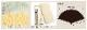 ★【女性用扇子】六十間・手描き雅(扇子袋付き・桐箱入り) 全2柄