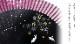 ★【女性用扇子】桜うさぎ(扇子袋付き・紙箱入り)全2色 (※ネコポス対応)