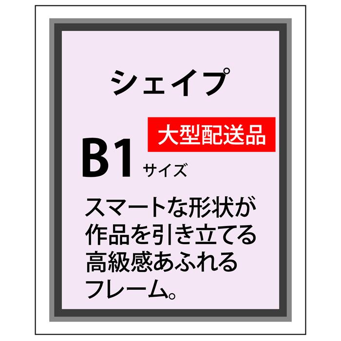 シェイプアルミ フレーム加工 B1(728×1030)