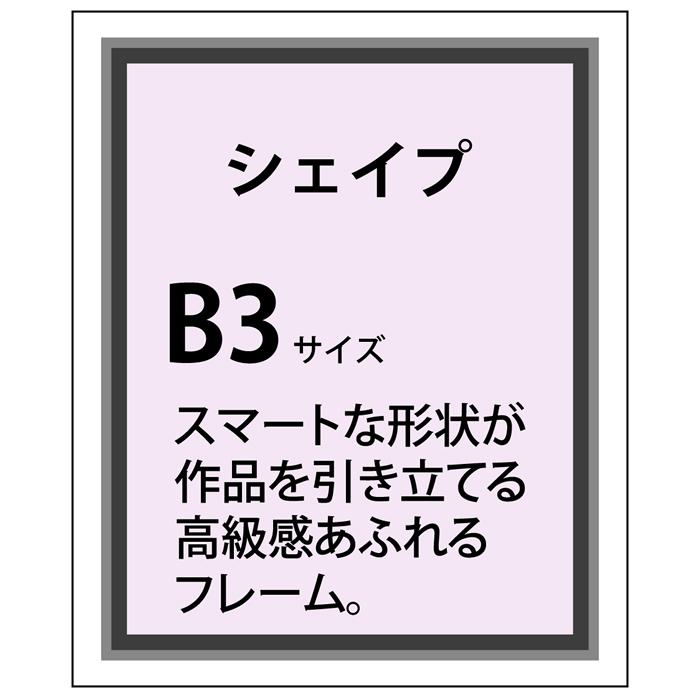 シェイプアルミ フレーム加工 B3(364×515)