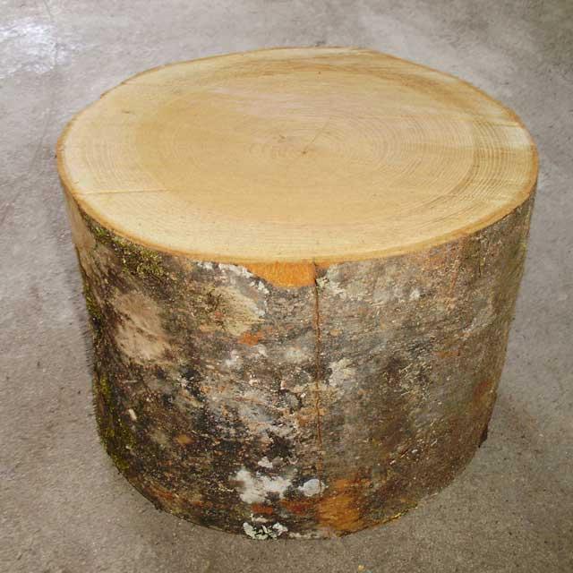 薪割り台 ケヤキ Φ30cm×高さ約25cm