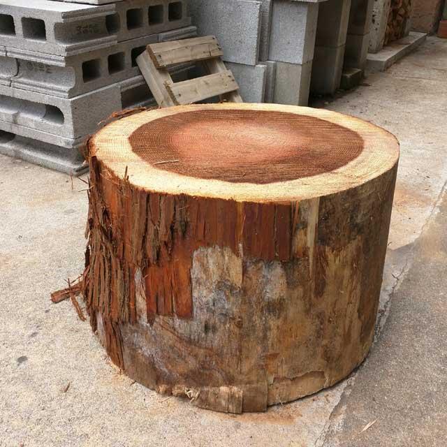 スギの切り株 直径40−45cm×高さ約30cm|日祝配達不可|時間帯指定不可|代引不可