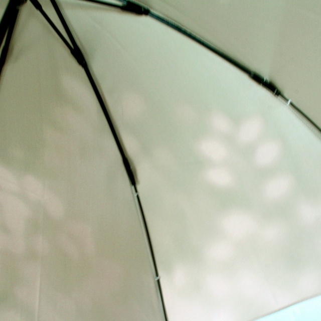 【晴雨兼用 折りたたみ傘】こもれび ブナ グリーン