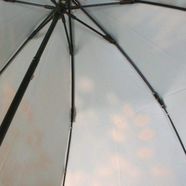 【晴雨兼用 折りたたみ傘】こもれび ブナ ライトブルー