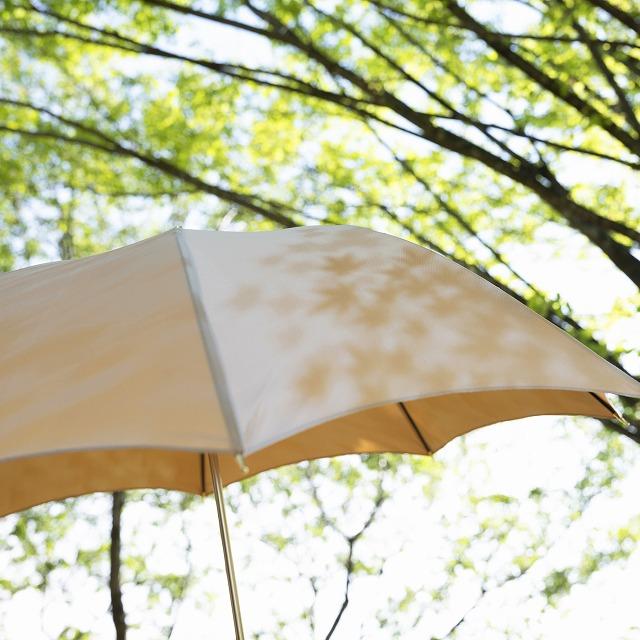 【晴雨兼用 ショート傘】こもれび カエデ イエロー