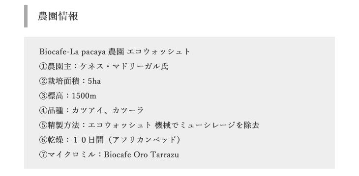 【送料無料】焙煎工房本池 コスタリカ ラ・パカヤ ウォッシュト(深煎り)400g