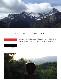 【送料無料】焙煎工房本池 イエメンモカ バニーイスマイリ ナチュラル(浅煎り)400g
