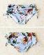 【即日発送】【ブルーは取寄せ】花柄フレアビキニ2カラー《レディース水着3点セット》【3535】