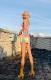 ダンス衣装 セクシー ダンス 衣装 ダンスウェア ダンスウエア 舞台衣装 タイダイ マーブル オレンジ ブルー【dance-8203】