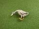数-SUU(PalnartPoc) 帯留 椿とメジロ、いちごフィールド、アヒル、鳥獣戯画(水遊び)