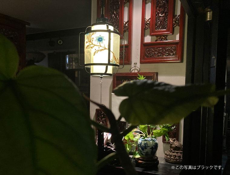 お花刺繍のシノワズリーペンダントランプ/BLACK