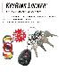 NITEIZE ナイトアイズ キーリングロッカー ステンレス KEYRING LOCKER STAINLESS キーラック S-BINER エスビナー Sビナー マイクロロック 鍵 5本 まとめる カラビナ キーホルダー キーリング