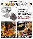 アウトドア 焚火台 6点セット CAMPINGMOON キャンピングムーン 焚き火台 MT-035 3人用 4人用 バーベキューグリル バーベキューコンロ ストーブ 囲炉裏 折り畳み キャンプ用品 バーベキュー用品 屋外 災害 便利グッズ