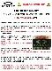 OAKLEY オークリー オークレー サングラス OO9208-9038 RADAR EV PATH レーダーEVパス Matte Black / Prizm Trail Torch スタンダードフィット USフィット プリズムレンズ 男性用 メンズ