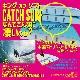 """ソフトボード CATCH SURF キャッチサーフ ODYSEA LOG 8'0"""" オディシー ログ サーフボード ロングボード ファンボード ミッドレングス サーフィン"""