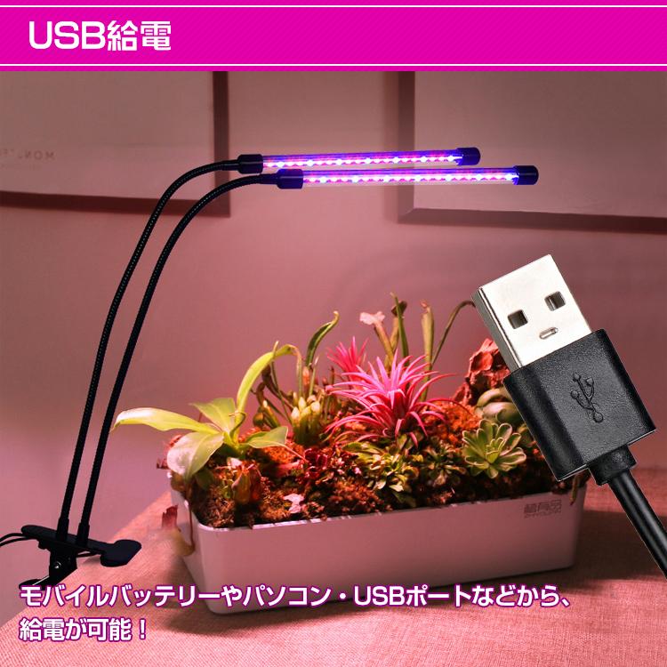 植物育成ライト ny241